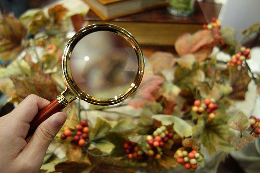 Mystery, Magnifying Glass, Autumn
