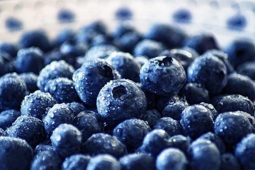 Blueberry, Black Berry, Moll Berry, Wild Berry, Berry