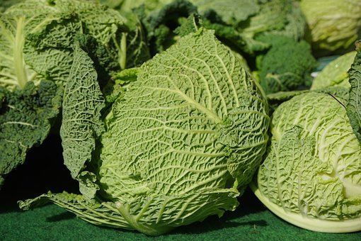Savoy Cabbage, Savoy, Vegetables, Kohl, Healthy, Green