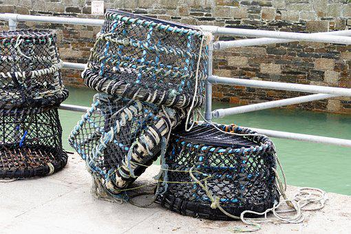 Fishing, Nets, Crabs, Crabbing, Fish, Water, Catch, Sea
