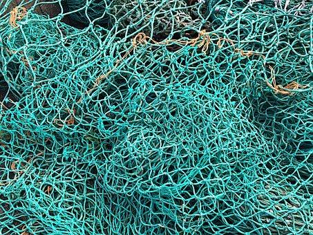 Fishing Net, Fish, Green, Fishing, Sea, Fischer