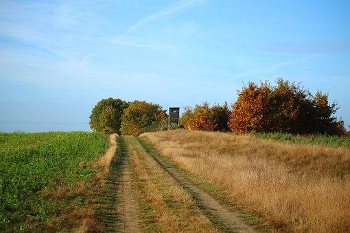 Lane, Perch, Hunter Was, Field, Hunting Seat, Nature