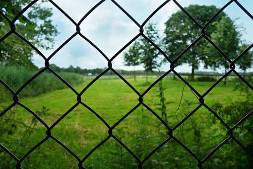 Fence, Wire, Mesh, Wire Fence, Wiremesh, Closed