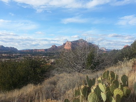 Sedona, Arizona, Castle Rock, Red Rocks, Desert, Cactus