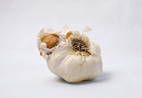 Garlic, Food, Vegetables, Corrupted, Eat, Product Photo