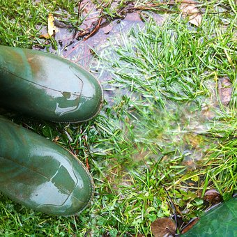 Rubber Boots, Rain, Autumn, Boots, Wet, Out, Nature