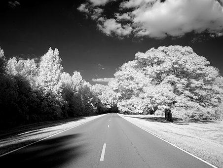 Natchez Trace Parkway, Mississippi, Tennessee, Road