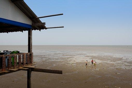 Low, Tide, Razor, Clam, Digging, Restaurant, Thailand