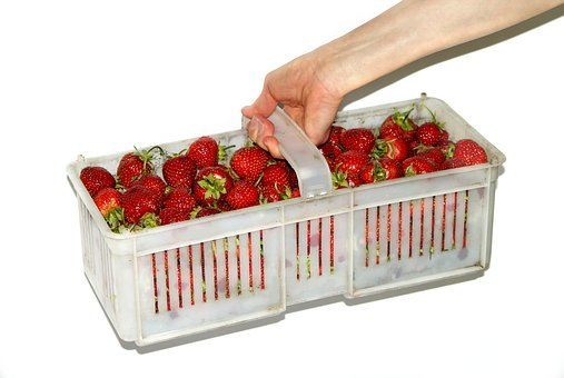 Shopping Cart, Strawberries, Strawberry, Eating, Food