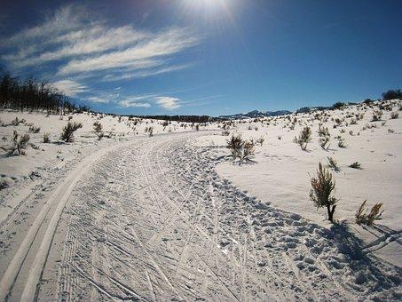 High, Mountain, Trial, Winter, Ski, Landscape, Snow