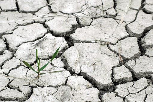 Drought, Responsibility, We, You And Me