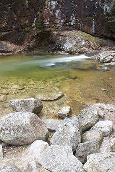 Water, Creek, Nature, Stream, River, Rock, Fresh
