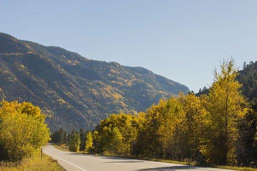 Mountains, Forrest, Landscape, Nature, Sky, Tree
