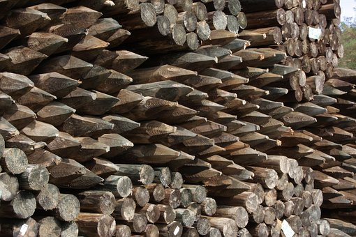 Wood, Timberyard, Fence Posts, Timber, Pointed