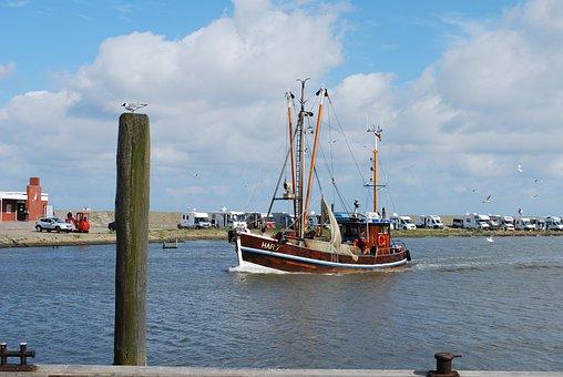 Lake, Sea, Port, Harlesiel, Fishing Boat, Gull, Bollard
