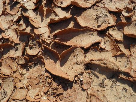 Mud, Background, Parched, Dry, Earth, Arid, Desert