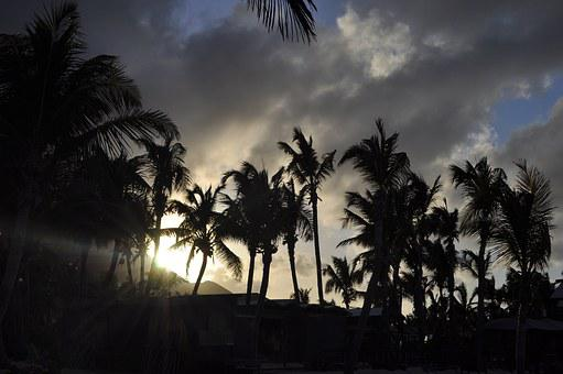 Sunset, Palm Trees, Evening, Sun, Nature, Sea, Sky
