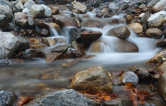 Stream, River, Water, Brook, Nature, Torrent, The Brook