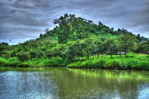 Morning, Rock, Natural, Young, Nature Landscape, Summer