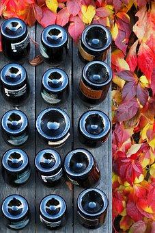 Wine, Glass, Autumn, Orange, Red, Yellow, Garden