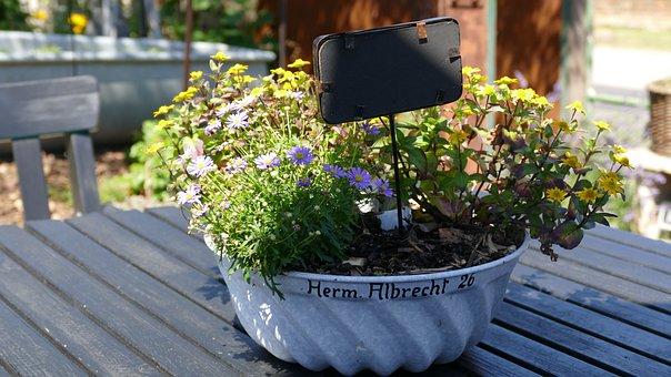 Flower Bowl, Decoration, Garden, Floral Arrangement