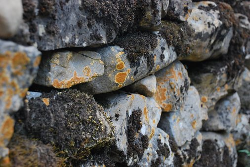 Wall, Pyrenees, Moss, Lichen, Rocks, Path