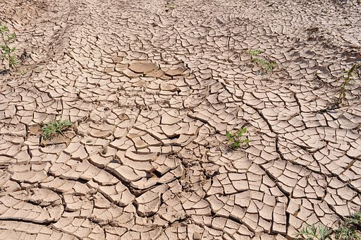 Drought, Cracked Earth, Dry Earth, Parched Land
