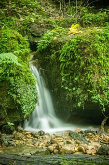 Waterfall, Bach, Water, Nature, Waters, Forest, Murmur