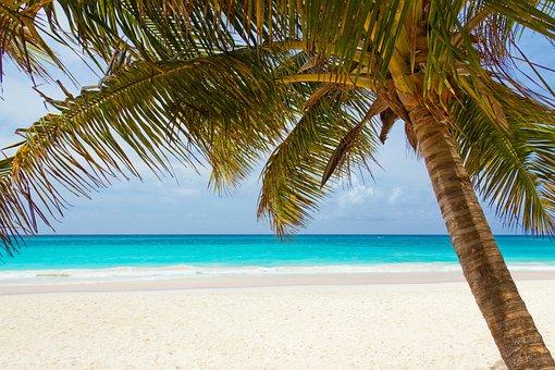 Beach, Beautiful, Blue, Coast, Landscape, Ocean