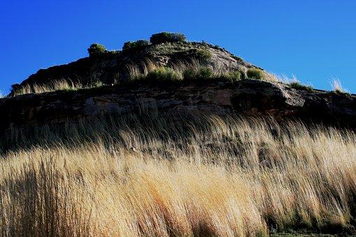 Hill, Grass, Tall, Light Yellow-white, Rock, Rockface