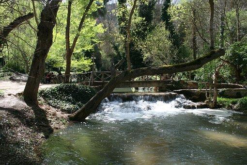 Landscape, Monastery, Stone, Tramp, Flow, Forest, Tree