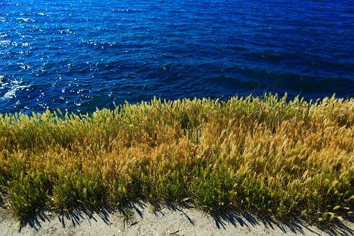 Sea, Black Sea, Crimea, Clouds, Summer, Stone, City