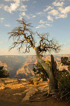Grand Canyon, Arizona, Usa, Canyon, National Park