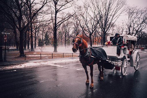Central Park, New York, Ho, New York City, Manhattan