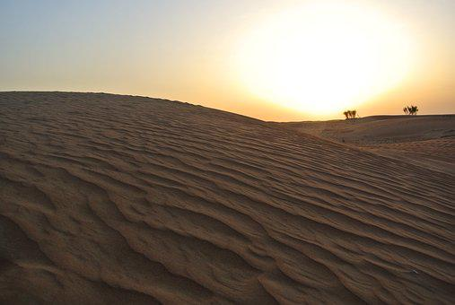 Desert, Sunset, Camels, Landscape, Sand, Sunlight