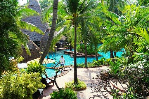 Resort, Hotel, Beach, Swimming, Pool, Tree, Green, Blue