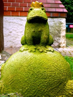 Frog Prince, Fairy Tales, Frog, Crown, Fig, Animal