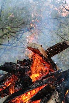 Koster, Spring, Firewood, Fire, Burns, Spark, Coals