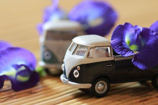 Model Car, Flower, Indoor, Volkswagen, Toy