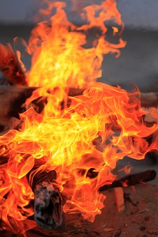 Fire, Koster, Coals, Firewood, Campfire, Flame, Burn