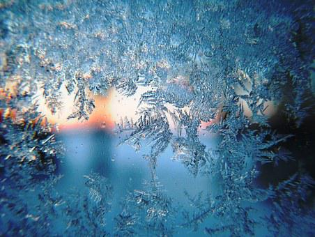 Frost, Winter, Morning, Snow, Season, White, Holiday