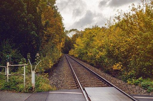 Seemed, Autumn, Track, Railway Tracks