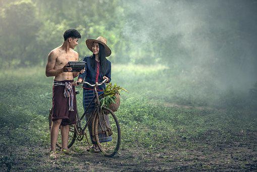 Adult, Agriculture, Bicycle, Asia, Basket, Beautiful
