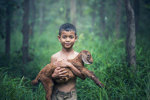 Boys, Outdoor, Thailand, Baby, Agriculture, Mammal