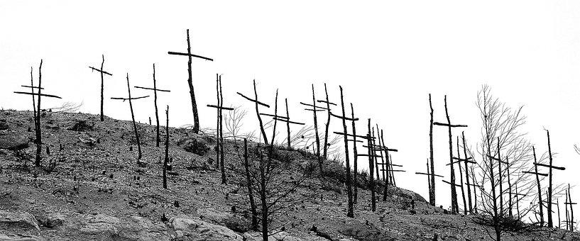 Forest Fire, Burnt Mountain, Degradation