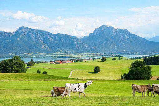 Allgäu, Ostallgäu, Bavaria, Mountains, Mountain Range