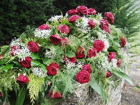 Roses, Morning Mist, Cemetery, Mourning, Memorial