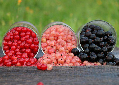 Currant, Grade, Glass, Red, Black, Three, Bright, Berry