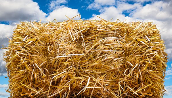 Straw Bales, Autumn, Straw, Field, Harvest, Straw Role