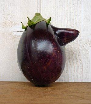 Vegetables, Eggplant, Vegetable Garden, Food, Harvest